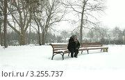 Купить «Пожилая женщина на прогулке в зимнем парке», видеоролик № 3255737, снято 31 января 2012 г. (c) Владимир Никулин / Фотобанк Лори