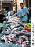 Купить «Рыбный лоток на улице в старой части города, в районе рынка Хан аль-Халили (Khan el-Khalili Bazaar), Каир, Египет», эксклюзивное фото № 3257897, снято 21 января 2012 г. (c) Николай Винокуров / Фотобанк Лори