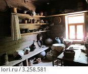 Витославицы, интерьер избы (2011 год). Редакционное фото, фотограф Алина Анохина / Фотобанк Лори