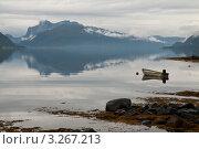 Купить «Туманное утро на фьорде, Норвегия», фото № 3267213, снято 15 августа 2011 г. (c) Юлия Бабкина / Фотобанк Лори