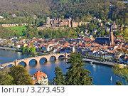 Купить «Вид на Гейдельберг, Германия», фото № 3273453, снято 20 июня 2019 г. (c) Sergey Borisov / Фотобанк Лори