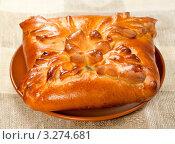 Купить «Русские пироги - кулебяка», фото № 3274681, снято 11 октября 2011 г. (c) ElenArt / Фотобанк Лори