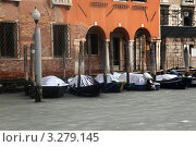 Венеция. Зима 2012. Лодки в снегу. Стоковое фото, фотограф Татьяна Лата / Фотобанк Лори