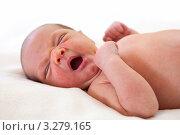 Купить «Недельный младенец зевает во сне», фото № 3279165, снято 16 февраля 2019 г. (c) Бандуренко Андрей / Фотобанк Лори