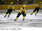 Купить «Хоккей с мячом.   ХК «Мурман» (Мурманск) в игре с «Динамо-Москва»», фото № 3282525, снято 20 января 2019 г. (c) Pukhov K / Фотобанк Лори