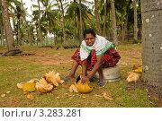 Женщина рубит кокос. Черный пляж, Варкала (2011 год). Редакционное фото, фотограф Кудрявцева Светлана / Фотобанк Лори