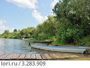 Летний день у реки. Стоковое фото, фотограф Маргарита Смирнова / Фотобанк Лори