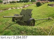 Купить «45-мм противотанковая пушка образца 1937 года (53-К)», эксклюзивное фото № 3284057, снято 19 июня 2010 г. (c) Алёшина Оксана / Фотобанк Лори