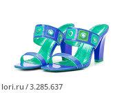 Купить «Сине-зеленые кожаные женские босоножки на белом фоне», фото № 3285637, снято 14 сентября 2008 г. (c) Elnur / Фотобанк Лори