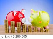 Купить «Две свинки копилки и стопки монет на столе», фото № 3286305, снято 21 ноября 2011 г. (c) Elnur / Фотобанк Лори