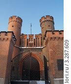 Купить «Калининград. Фридрихсбургские ворота, вид снизу», фото № 3287609, снято 17 февраля 2012 г. (c) Ирина Борсученко / Фотобанк Лори