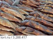 Купить «Копчёная рыба на прилавке рынка», эксклюзивное фото № 3288417, снято 4 января 2012 г. (c) Константин Косов / Фотобанк Лори