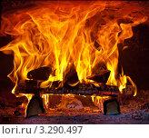Горящие дрова в печи. Стоковое фото, фотограф Olsi / Фотобанк Лори