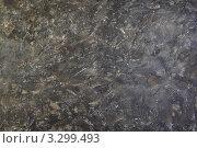 Купить «Темно-серый студийный фон в разводах», фото № 3299493, снято 22 ноября 2010 г. (c) Losevsky Pavel / Фотобанк Лори