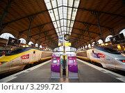 Купить «Париж, восточный железнодорожный вокзал с поездами TVG», фото № 3299721, снято 31 декабря 2009 г. (c) Losevsky Pavel / Фотобанк Лори