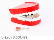 Купить «Маленькие игрушечные челюсти с белыми зубами с заводным механизмом», фото № 3300489, снято 1 октября 2010 г. (c) Losevsky Pavel / Фотобанк Лори