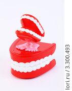 Купить «Две игрушечные пластмассовые челюсти на белом фоне», фото № 3300493, снято 1 октября 2010 г. (c) Losevsky Pavel / Фотобанк Лори