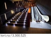 Купить «Эскалатор и лестница с подсветкой», фото № 3300525, снято 8 января 2011 г. (c) Losevsky Pavel / Фотобанк Лори