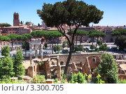 Купить «Развалины терм Каракаллы, Рим», фото № 3300705, снято 2 августа 2010 г. (c) Losevsky Pavel / Фотобанк Лори