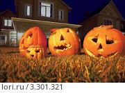 Купить «Четыре тыквы Хэллоуин на газоне ночью», фото № 3301321, снято 30 октября 2010 г. (c) Losevsky Pavel / Фотобанк Лори