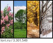 Коллаж из фотографий пейзажей в разное время года. Стоковое фото, фотограф Losevsky Pavel / Фотобанк Лори