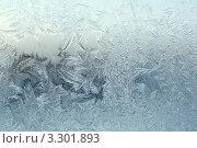 Купить «Замороженное стекло-морозный рисунок», фото № 3301893, снято 17 февраля 2012 г. (c) Александр Fanfo / Фотобанк Лори