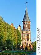 Купить «Кафедральный собор. Калининград», фото № 3306661, снято 9 октября 2011 г. (c) Сергей Трофименко / Фотобанк Лори