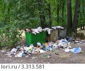 """Купить «Свалка мусора. Парк """"Лосиный остров"""". Гольяново. Москва», эксклюзивное фото № 3313581, снято 3 августа 2010 г. (c) lana1501 / Фотобанк Лори"""