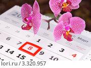 Купить «Праздник 8 марта», эксклюзивное фото № 3320957, снято 15 июля 2018 г. (c) Яна Королёва / Фотобанк Лори