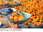 Купить «Прилавок с мандаринами на восточном рынке», фото № 3323653, снято 28 января 2012 г. (c) Николай Винокуров / Фотобанк Лори