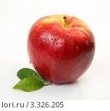 Влажное красное яблоко. Стоковое фото, фотограф Елена Иценко / Фотобанк Лори