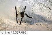 Купить «Падение лыжного акробата», фото № 3337693, снято 18 июня 2019 г. (c) Pukhov K / Фотобанк Лори