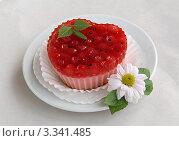Желейное пирожное с красной смородиной на сером фоне. Стоковое фото, фотограф Чукова Жанна / Фотобанк Лори