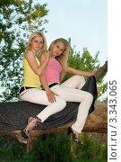 Купить «Две молодые блондинки на дереве», фото № 3343065, снято 15 мая 2010 г. (c) Сергей Сухоруков / Фотобанк Лори