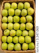 Купить «Зеленые яблоки в корзине. Вид сверху», фото № 3347069, снято 20 января 2012 г. (c) Лямзин Дмитрий / Фотобанк Лори