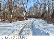 Купить «Заснеженная дорога среди берёз», эксклюзивное фото № 3353973, снято 10 марта 2012 г. (c) Елена Коромыслова / Фотобанк Лори