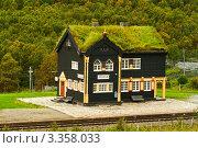 Купить «Здание железнодорожного вокзала с традиционной норвежской травяной крышей», фото № 3358033, снято 17 августа 2011 г. (c) Юлия Бабкина / Фотобанк Лори