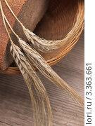 Купить «Буханка хлеба и колосья пшеницы», фото № 3363661, снято 15 августа 2011 г. (c) Олег Жуков / Фотобанк Лори