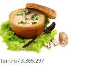 Купить «Картофельный суп в миске из хлеба», фото № 3365297, снято 18 марта 2012 г. (c) Марина Сапрунова / Фотобанк Лори