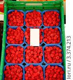 Купить «Спелая малина в пластиковых ящиках», фото № 3374213, снято 2 августа 2011 г. (c) Дмитрий Наумов / Фотобанк Лори