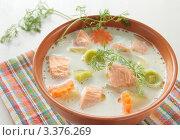 Купить «Суп из семги со сливками», фото № 3376269, снято 22 марта 2012 г. (c) Наталья Евстигнеева / Фотобанк Лори