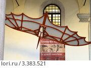 Купить «Реконструкция летательного аппарата по чертежам Леонардо да Винчи», фото № 3383521, снято 11 марта 2012 г. (c) Окунев Александр Владимирович / Фотобанк Лори