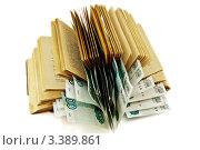 Деньги, заложенные между страницами старой книги. Стоковое фото, фотограф Vladimir Shashkin / Фотобанк Лори