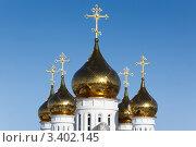 Купить «Купола собора Святой Живоначальной Троицы (Петропавловск-Камчатский)», фото № 3402145, снято 3 апреля 2012 г. (c) А. А. Пирагис / Фотобанк Лори
