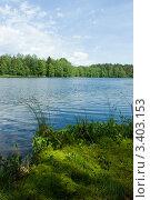 Купить «Лето на лесном озере», фото № 3403153, снято 10 июня 2007 г. (c) Дмитрий Наумов / Фотобанк Лори