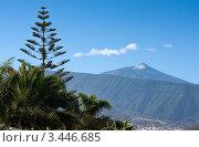 Вид на вулкан Тейде. Канарские острова. Тенерифе. Стоковое фото, фотограф Константин Хрипунков / Фотобанк Лори