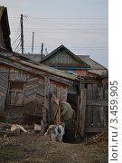 Старая бабушка идет домой и за ней её собачка. Стоковое фото, фотограф Ахметзянов тимур / Фотобанк Лори