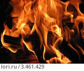 Огонь всё ярче. Стоковое фото, фотограф Вадим Янгунаев / Фотобанк Лори