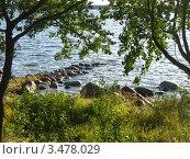 Каменная гряда, г. Приморск. Стоковое фото, фотограф Alexander Dmitriev / Фотобанк Лори