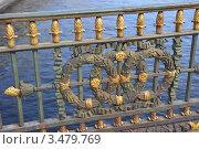 Купить «Большой Конюшенный мост. Фрагмент перил», эксклюзивное фото № 3479769, снято 29 апреля 2012 г. (c) Александр Алексеев / Фотобанк Лори